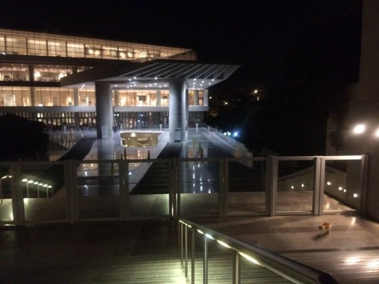 Chat roux au pied des escaliers descendant au musée de l'Acropole, bâtiment moderne éclairé pour la nuit.