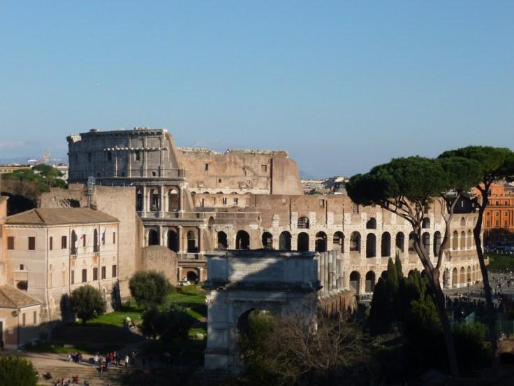 Le Colisée de Rome vu depuis les hauteurs du Forum, de jour, ciel bleu, pins parasol sur la droite