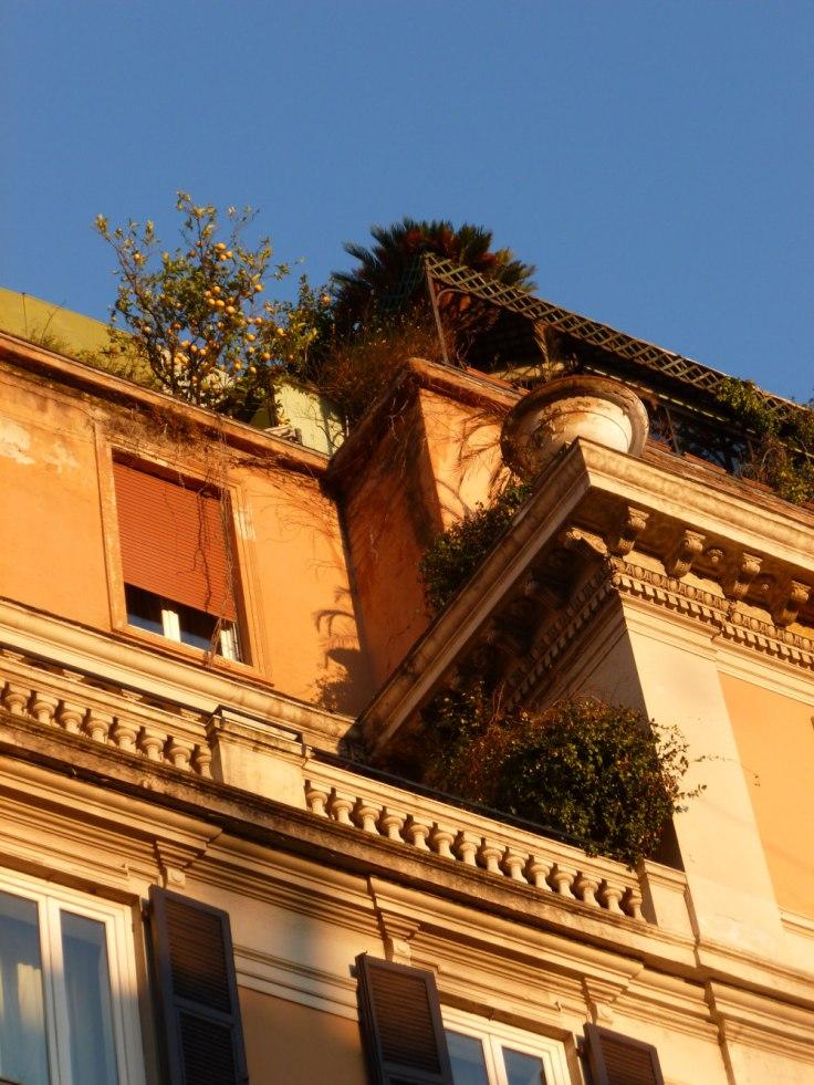 Détail du toit d'un immeuble vu depuis le Corso à Rome : façade orange et oranger sur la plus haute terrasse.