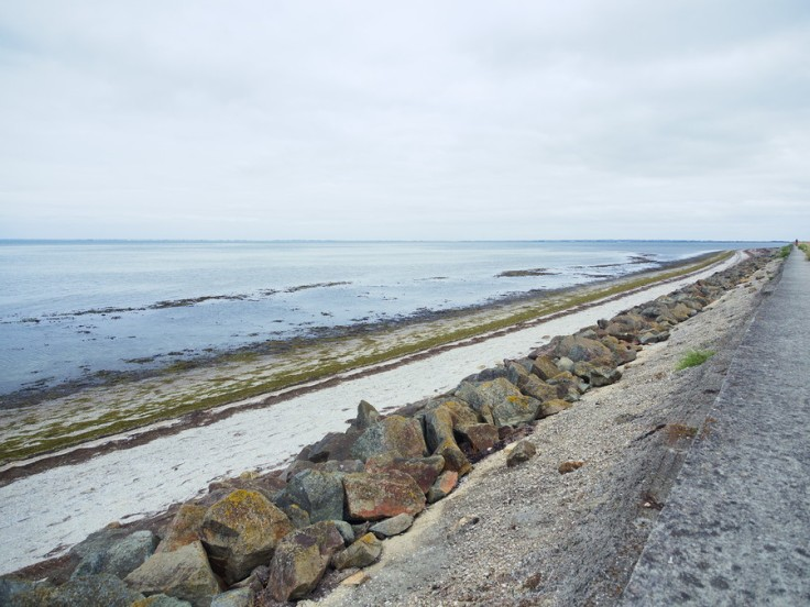 Vue de la plage et de l'océan depuis la digue du Polder de Sébastopol