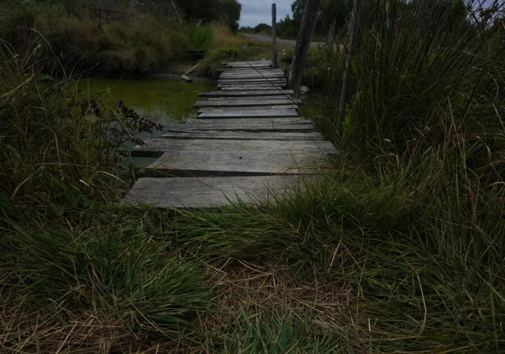 Vieux pont en planches de bois au-dessus d'un étier