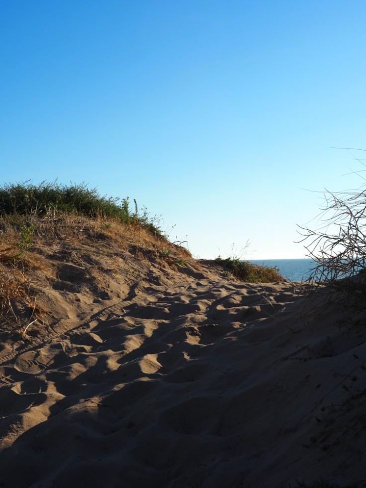 Chemine au sommet d'une dune, océan en arrière-plan